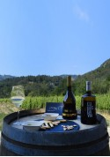 Cuñas Experience for Wine Lovers: Experience 1