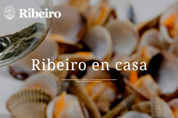 Tu Ribeiro en Casa