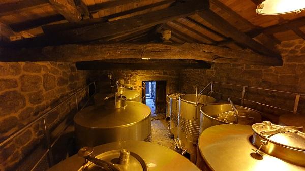 vino sostenible en bodega histórica